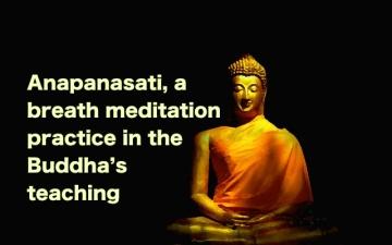buddhadrapedbreath